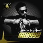 Theme song euro 2008 - Like a superstar - Shaggy