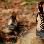 Pengabdian Sepasang Sepatu